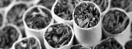 Tobacco_1600x600